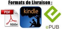 Livré aux formats PDF + epub + kindle pour un meilleur confort de lecture